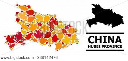 Mosaic Autumn Leaves And Usual Map Of Hubei Province. Vector Map Of Hubei Province Is Done With Rand