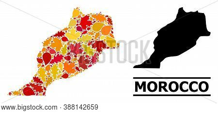 Mosaic Autumn Leaves And Solid Map Of Morocco. Vector Map Of Morocco Is Created From Random Autumn M