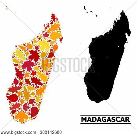 Mosaic Autumn Leaves And Usual Map Of Madagascar Island. Vector Map Of Madagascar Island Is Shaped O