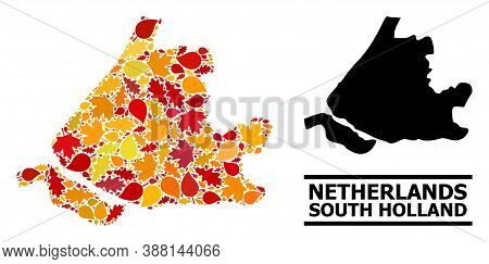 Mosaic Autumn Leaves And Solid Map Of South Holland. Vector Map Of South Holland Is Created From Sca