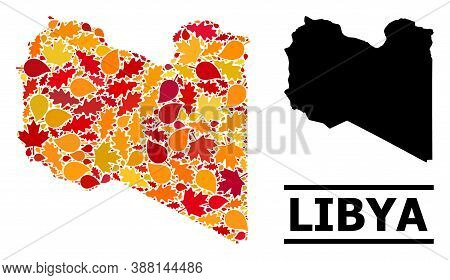 Mosaic Autumn Leaves And Usual Map Of Libya. Vector Map Of Libya Is Designed From Scattered Autumn M