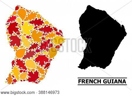Mosaic Autumn Leaves And Usual Map Of French Guiana. Vector Map Of French Guiana Is Made From Random