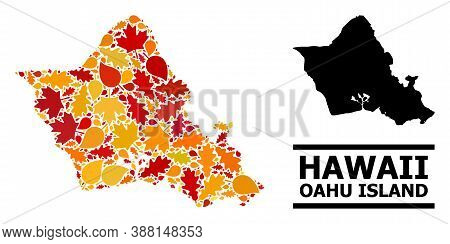 Mosaic Autumn Leaves And Solid Map Of Oahu Island. Vector Map Of Oahu Island Is Shaped From Randomiz