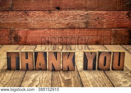 thank you - word abstract in vintage letterpress wood type blocks against grunge barn wood background