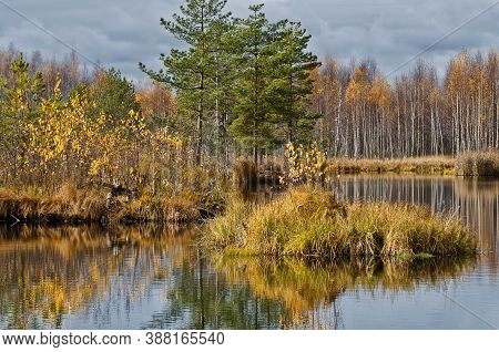 Colorful Golden Deep Autumn On The Lake With Reflections