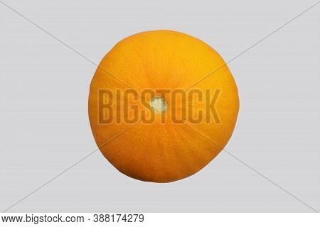 Ripe Melon, Bottom View, Isolated On Gray Background.