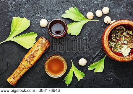 Ginkgo Biloba In Herbal Medicine