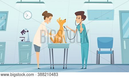 Veterinarian Clinic. Doctor In Cabinet Examining Pets Dog Treatment Health Vector Therapy Center Vet