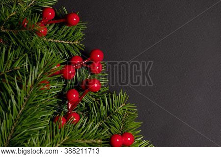 Pine Christmas tree branches and red berries on black paper background flat lay top view mock-up