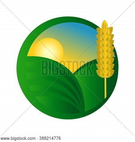 Eco-friendly Icon. Natural And Organic Food Logo.vector Illustration. Golden Ear Of Wheat, Green Fie