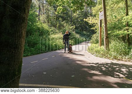 Young Woman Walks With A Dog In The Park. Stopped At A Crossroads. Choice Concept