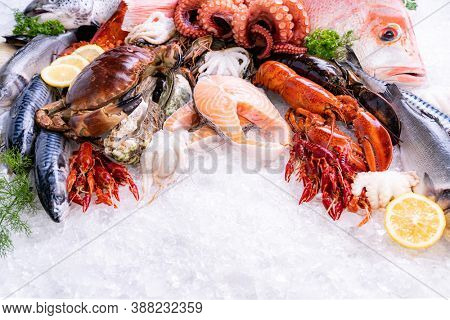 Front view of variety of fresh luxury seafood, Lobster salmon stone crab mackerel crayfish prawn octopus mussel and scallop, on ice background with icy smoke in seafood market. Photo With Copy space.