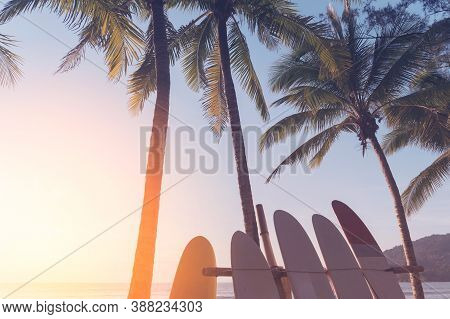 Surfboard And Palm Tree On Beach Double Exposure With Colorful Bokeh Sun Light Texture Abstract Back