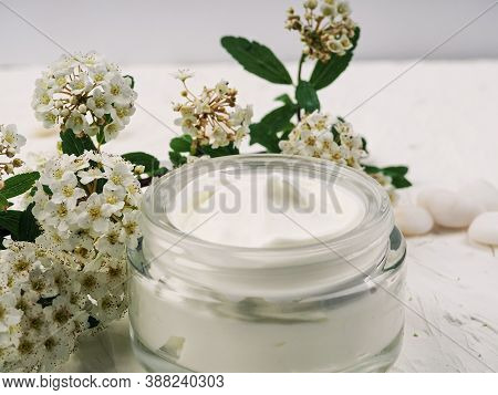 Face And Body Cream On A White Background, Self-care, Health And Beauty