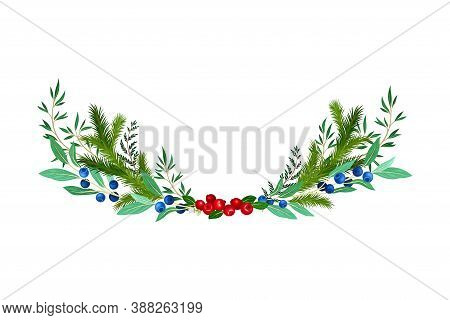 Evergreen Branches Of Coniferous Tree And Blueberry Arranged In Semicircular Vector Composition