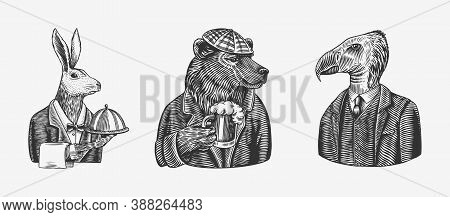 Grizzly Bear With A Beer Mug. Hare Or Rabbit Waiter Bird. Fashion Animal Character. Hand Drawn Sketc
