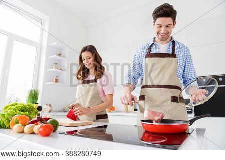 Dream Harmony Family Day Concept. Two People Couple Enjoy Weekend Hobby Cooking Man Frying Pan Raw B