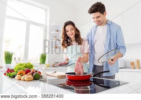 Portrait Of Two Nice Attractive Cheerful Friendly People Cooking Domestic Fresh Homemade Meal In Lig