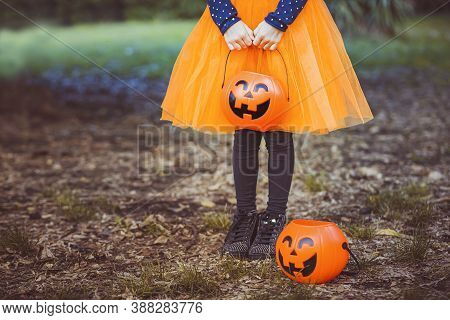 Halloween Kids. Little Girl With Jack O Lantern In Witch Hat With Pumpkin Candy Bucket. Toddler Kid