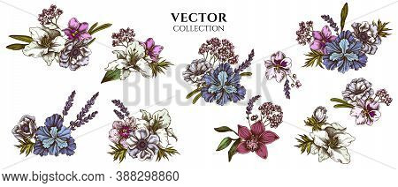Flower Bouquet Of Colored Anemone, Lavender, Rosemary Everlasting, Phalaenopsis, Lily, Iris Stock Il