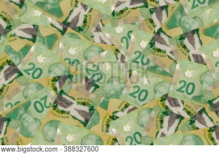 20 Canadian Dollars Bills Lies In Big Pile. Rich Life Conceptual Background