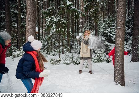 Mom, Dad, Son And Daughter Decided To Play Snowballs Between The Trees In The Snow.