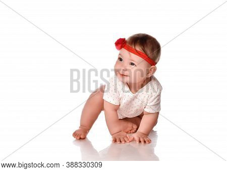 Pretty Adorable Crawling Baby Girl Studio Portrait. Female Six Month Toddler Child Wearing Body Stre
