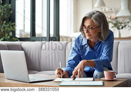 Happy Stylish Mature Old Woman Remote Working From Home Distance Office On Laptop Taking Notes. Smil