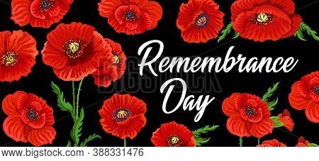 Remembrance Day Poppy Flowers, Anzac Day National Memorial, Vector Poster. 15 April And 11 November