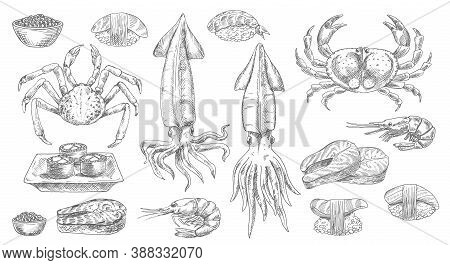 Seafood, Sketch Food Of Sea, Fish And Sushi, Vector Isolated Hand Drawn Icons. Seafood Oyster, Musse