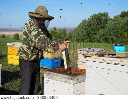 Beekeeper On Apiary. Beekeeper Is Working With Bees And Beehives On The Apiary. Russia, Saratov - Au
