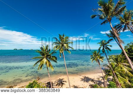 Beach On Koh Samui In Thailand, Paradise, Sunny Beach, Coconuts And Palm Trees, Sunbathing And Swimm