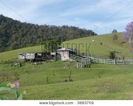 Rural Scene 2 Bellbrook N.S.W. Australia.
