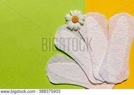 Feminine Hygiene During Menstruation. Menstrual Cycle. Hygiene Products For Women. Individual Hygein