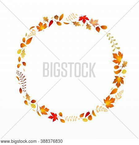 Dry Leaf And Floral Circle Shape Falling On Background, For An Autumn Design Element, Vector Illustr
