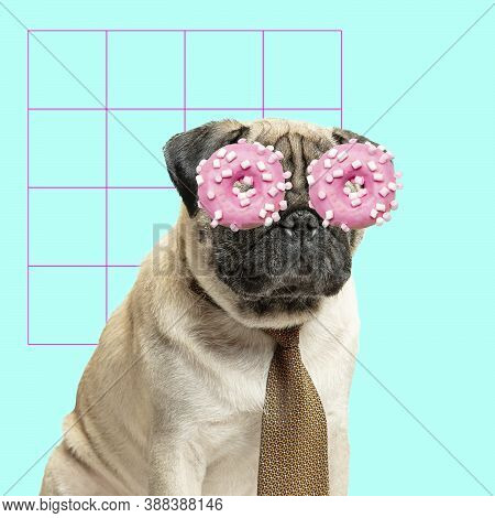 Coffee Break. Modern Design. Contemporary Art Collage With Cute Dog And Trendy Colored Background Wi
