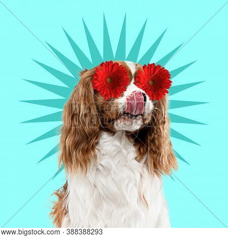 Flower Look. Modern Design. Contemporary Art Collage With Cute Dog And Trendy Colored Background Wit