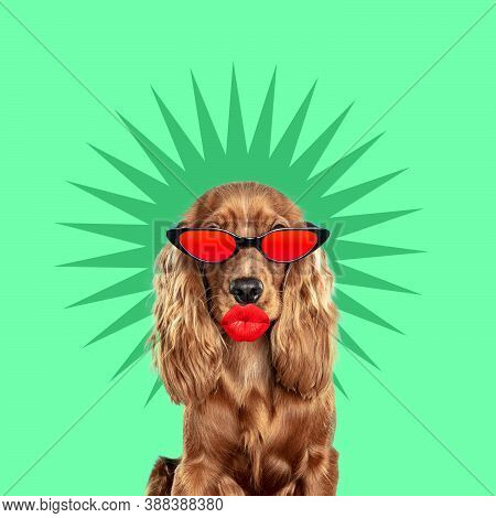 Like Red. Modern Design. Contemporary Art Collage With Cute Dog And Trendy Colored Background With G