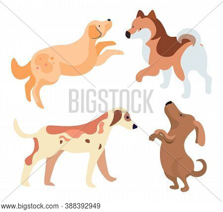 Set Of Funny Dogs Isolated Puppies Purebreds In Flat Style. Vector Illustration Of Canine Animals, S