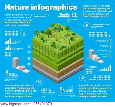 Infographics Nature Geological And Underground Layers Of Soil Under The Isometric