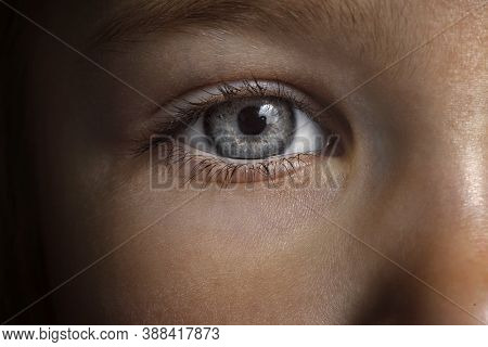 Beautiful Gray Macro Baby Eyes. Girl Eyes Close Up