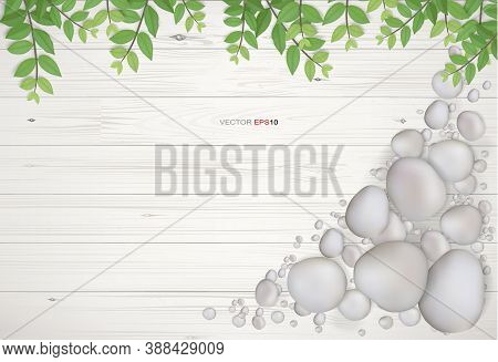 Background Of White Wood With Green Leaves And Gravel Stone. Natural Abstract Background For Templat