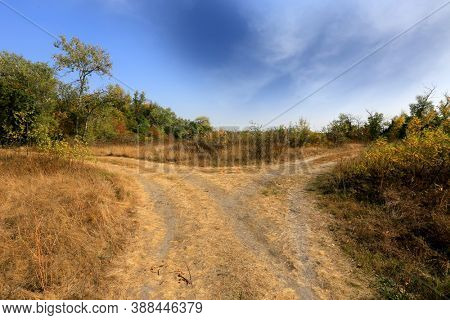 Landscape with fork rut road in autumn steppe