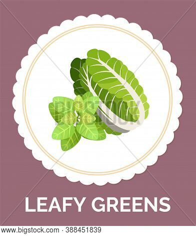 Leafy Vegetables Icons Set. Organic And Vegetarian Illustration With Leafy Greens. Green Lettuce Hea