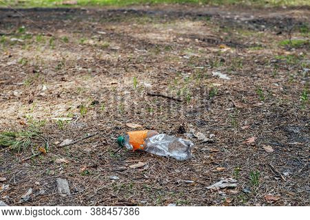 Plastic Bottle In Forest Among Plants. Toxic Plastic Into Nature Everywhere. Rubbish Heap In Park Am