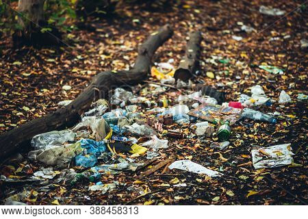Garbage Pile In Autumn Forest. Toxic Plastic Into Nature Everywhere. Rubbish Heap In Park Among Fall