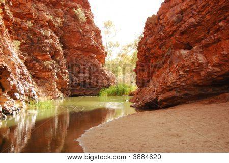 Waterhole In The Desert