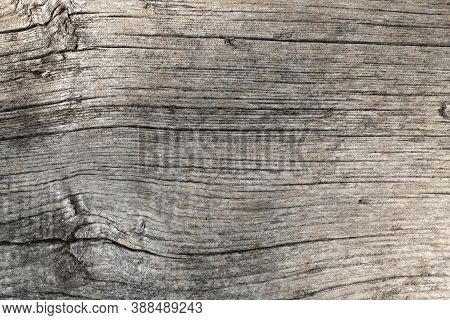 Old Dilapidated Wood Of Gray Color. Abstract Background