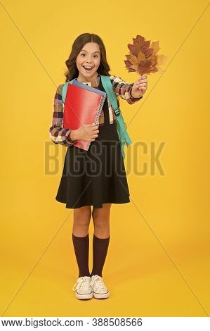 Nature Lesson. Happy Little Child Hold Autumn Leaves For Biology Lesson. Small Girl Smiling With Les