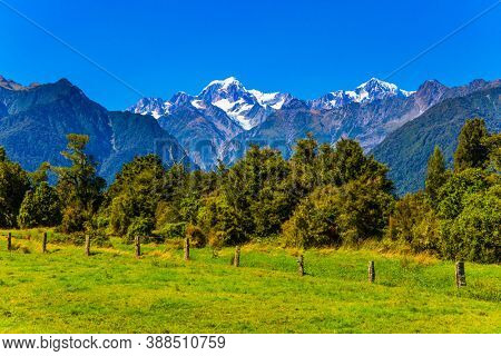 The highest peak of New Zealand, Mount Cook and Mount Tasman is covered in snow and glaciers. South Island of New Zealand. Great fields, forests and hills. Wonderful summer day